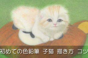 初めて色鉛筆で子猫を描いた作品と色鉛筆描き方のコツ