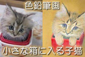 色鉛筆&水彩&アクリル絵の具を使った絵本の挿絵 子猫作品2の制作過程